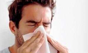 sneeze9412_1_innerbig